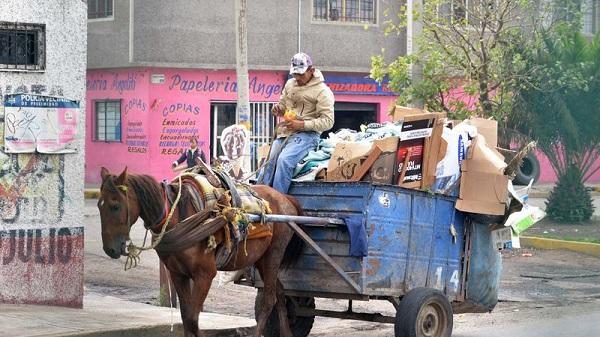 Cartonero con carro y caballo
